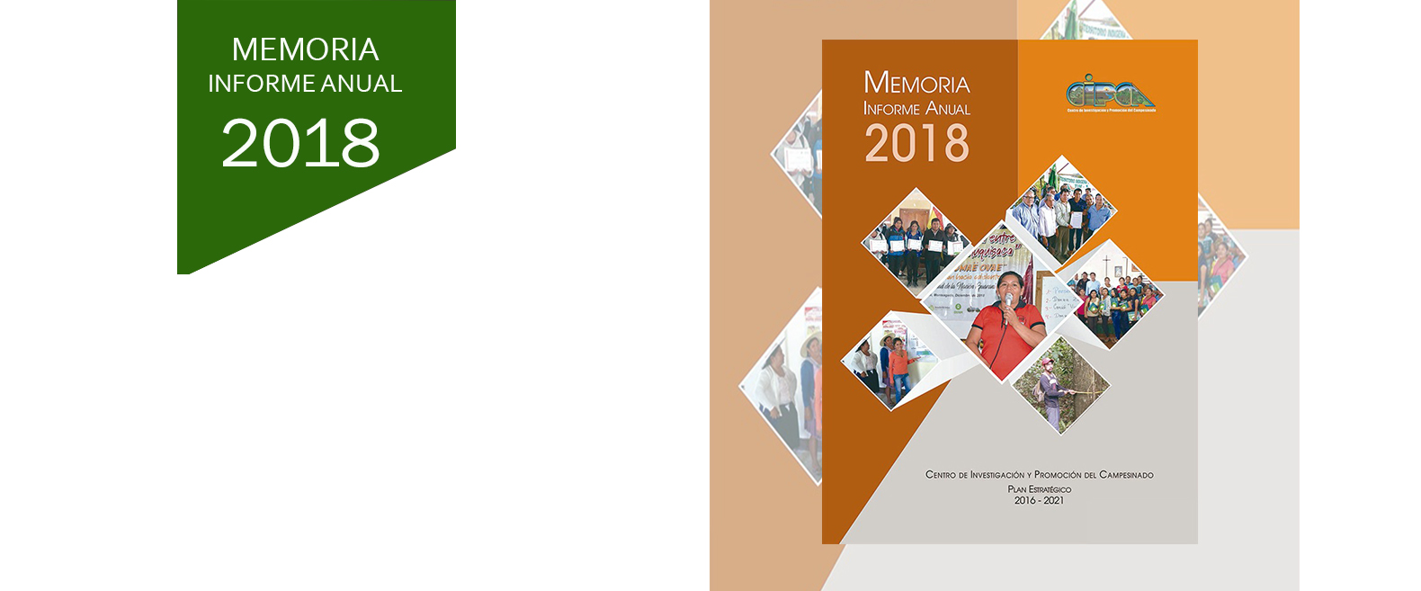 Memoria Informe Anual - CIPCA 2018