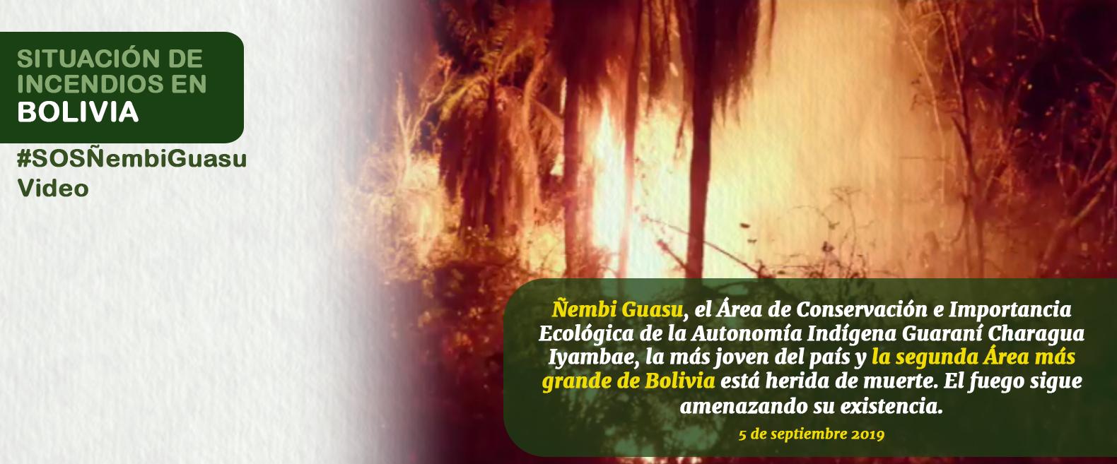 Ñembi Guasu El Gran Refugio Herido de Muerte.