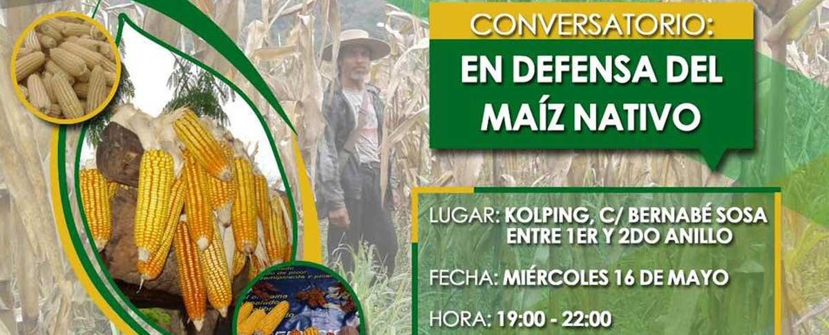 Productores y sociedad civil analizarán los efectos del maíz transgénico en Bolivia el 16 de mayo en Santa Cruz
