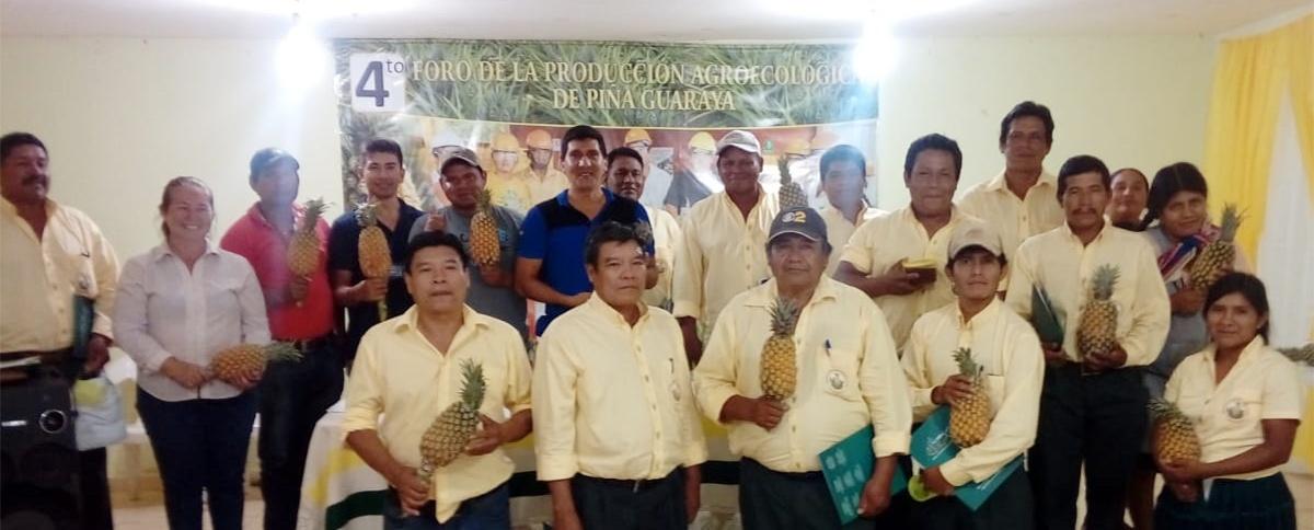 Productores proponen innovaciones tecnológicas y mejoras en la transformación y comercialización de la piña guaraya