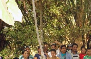 Jóvenes  del Norte Amazónico boliviano reciben apoyo para la producción apícola
