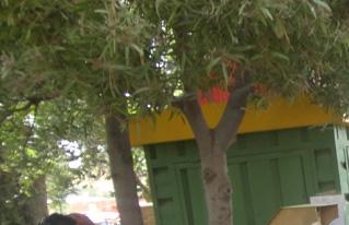 Producción bajo sistemas de riego garantizó productos en la feria agroecológica de Anzaldo