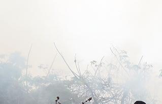 CIPCA apoya la capacitación interinstitucional de combate de incendios en el Norte Amazónico de Bolivia