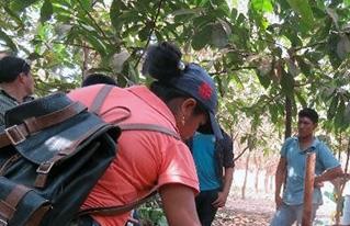 Técnicos de la Amazonía boliviana intercambian prácticas agroecológicas sobre mejoramiento de suelos y manejo de plagas.