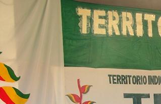 Caminata de reafirmación del derecho indígena sobre Bosques Tsimanes