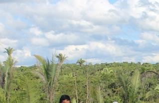 Productores de Ascensión de Guarayos se capacitan en manejo de sistemas agroforestales