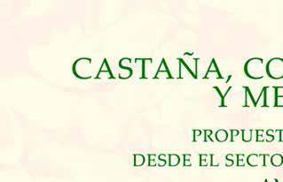 """CIPCA publica la investigación  """"Castaña, condiciones laborales y medio ambiente"""" con propuestas de incidencia pública"""