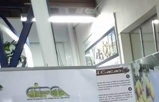 CIPCA expuso investigaciones sobre cacao y pastas de cacao amazónico en el Museo del Chocolate de la Larga Noche de Museos