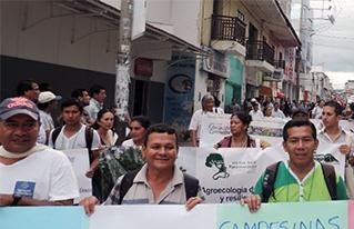 VII Foro Social Panamazónico: en Tarapoto multitudinaria marcha rechaza las actividades extractivistas en la región andino amazónica