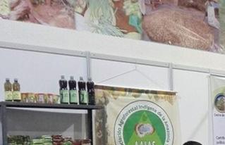 CIPCA promovió en la EXPOFOREST productos forestales no maderables de organizaciones económicas indígenas y campesinas