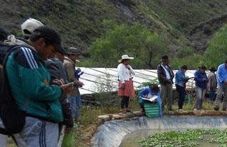 CIPCA Altiplano en el XXII Encuentro Nacional de la Plataforma de Suelos para una agricultura sostenible
