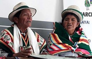 Nación originaria Suyu Jacha karangas inició proceso de formación política