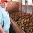 Chocolate, asaí, majo, copoazú, delicias que oculta la Amazonia