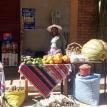 Importación de alimentos y políticas de fortalecimiento de la agricultura sostenible