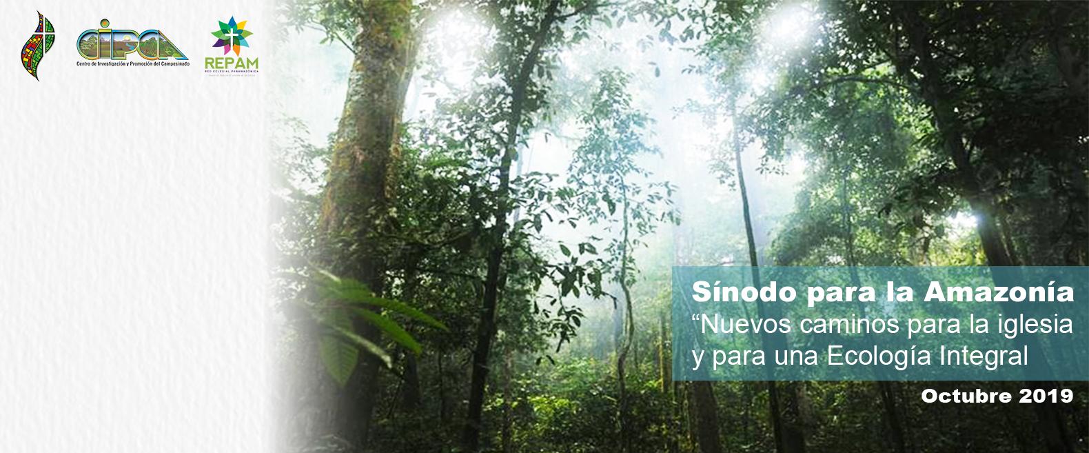 Boletín Especial #SínodoAmazónico