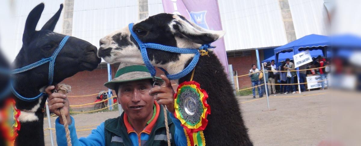 14 países de diferentes continentes participaron en el VIII Congreso Mundial de Camélidos en Oruro