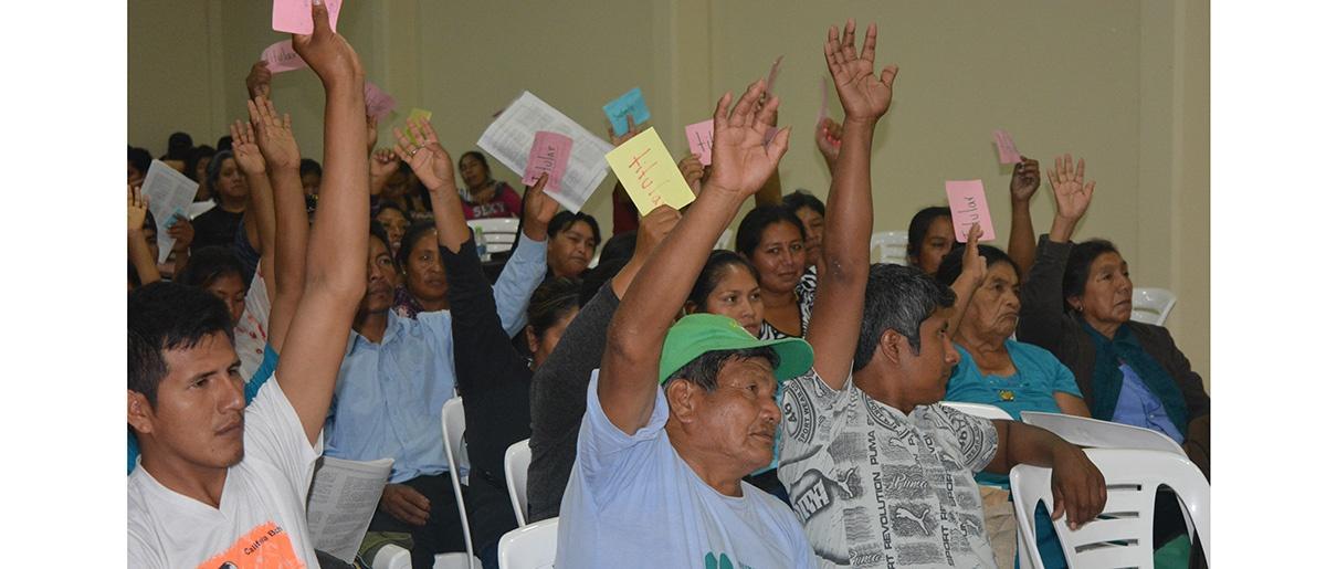 """Estatuto de la Autonomía Indígena Guaraní """"Kereimba Iyaambae"""" un año en espera de su aprobación constitucional"""