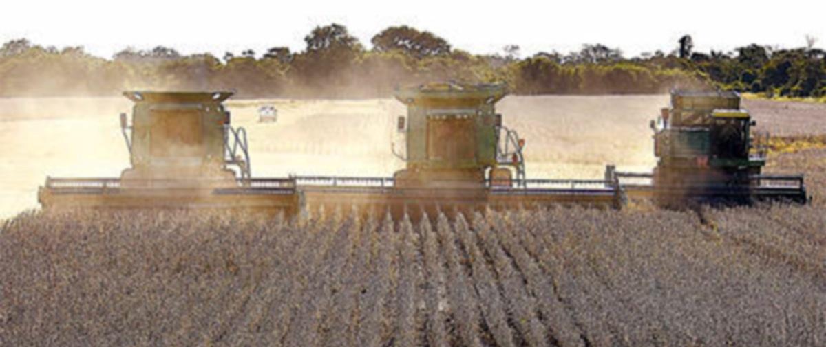 Gobierno mantiene expansión de frontera agrícola