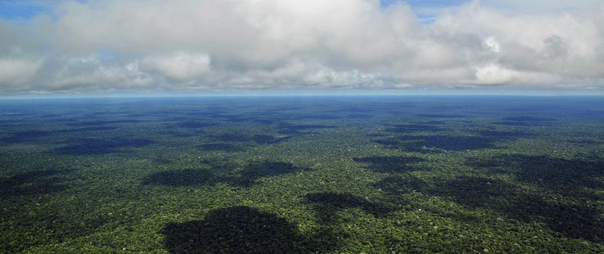 ¿Qué es el Sínodo Amazónico?