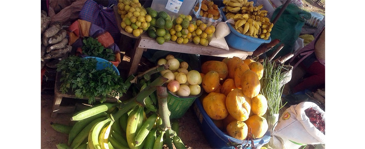Pequeños productores de la provincia guarayos abastecen los mercados locales con la agricultura familiar