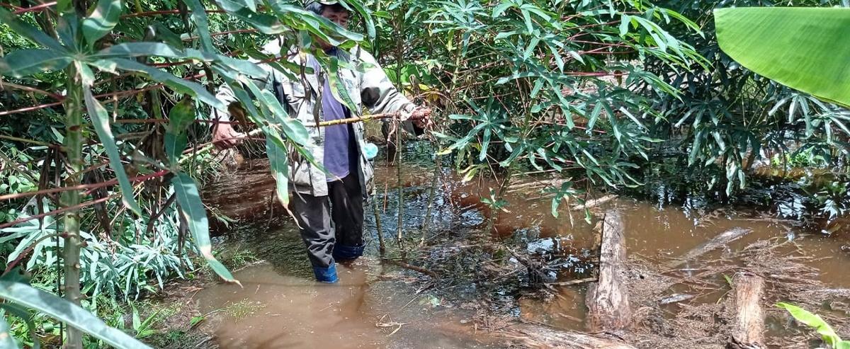 Lluvias e inundaciones en el Beni ocasionan pérdidas agrícolas y ponen en riesgo la salud y seguridad alimentaria de las familias
