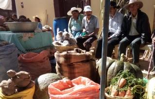 Feria agroecológica y de comidas típica en el municipio de Anzaldo muestra la riqueza productiva de la región