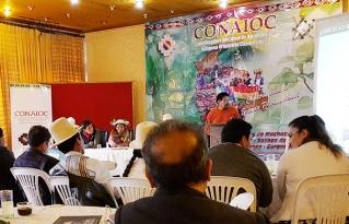 Las autonomías indígena originario campesinas definen estrategias para impulsar la economía comunitaria