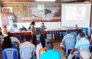 Organizaciones e instituciones de Riberalta identifican acciones de fomento al complejo productivo de frutas amazónicas