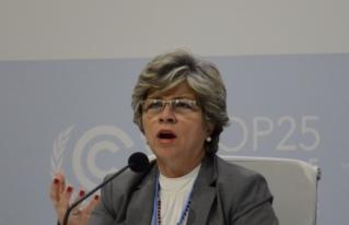 Ambientalistas e indígenas rechazan anuncio de Gobierno para retomar propuesta sobre bonos de carbono