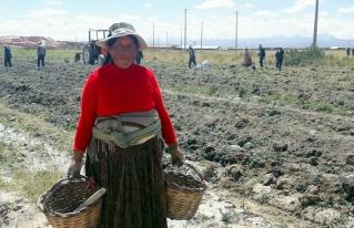 No hay cuarentena para las mujeres rurales del Altiplano
