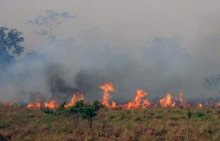 Focos de quema alertan sobre alto riesgo de incendios en la Chiquitania