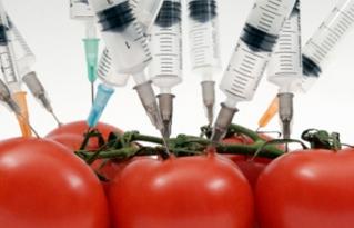 Federación de Bartolinas de Santa Cruz rechaza el DS 4232 que autoriza el uso de semillas transgénicas en Bolivia