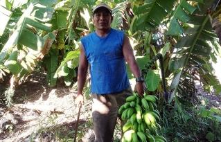 La crisis del coronavirus complica a muchos productores campesinos en la Chiquitanía