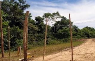 Denuncian que medidas adoptadas por el gobierno para enfrentar la pandemia ignoran al mundo indígena