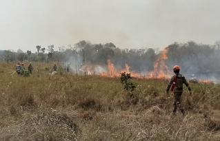 Municipio de San Ignacio de Velasco inmerso en una sequía intensa y amenaza constante de incendios forestales