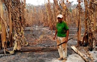 La provincia Guarayos en Santa Cruz está rodeada de fuego