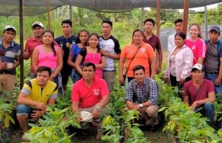 Productores de la Amazonia Sur se capacitaron en técnicas de producción de cacao nativo amazónico