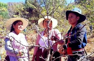 ¿Por qué festejar a las mujeres rurales?