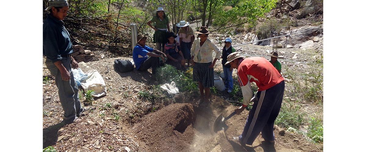 COVID-19, trabajadores informales y su vínculo con la agricultura familiar