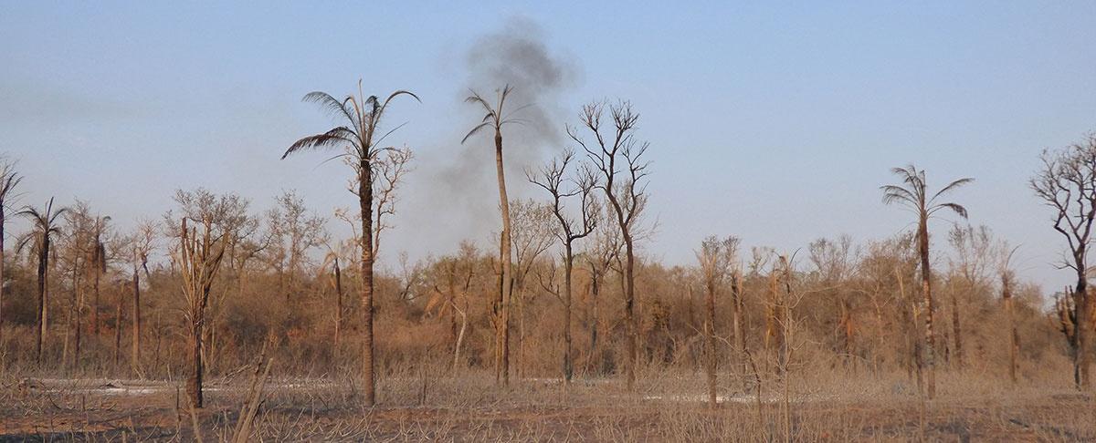 """""""La tormenta perfecta"""" profundiza nuestra vulnerabilidad ambiental como país."""
