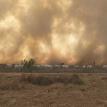 La sequía y los incendios forestales golpean a Beni