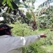 Tiempo de transición en el mundo: volver de la mano de la agroecología es otra forma de llegar