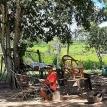Territorio y modos de vida: pueblos indígenas de tierras bajas y el modelo agroindustrial