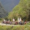 La marcha indígena y su legítima demanda de defensa de los territorios indígenas