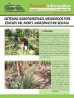 Sistemas Agroforestales mejoradas por Jóvenes del Norte Amazónico de Bolivia