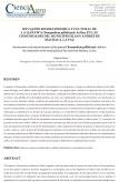 SITUACIÓN SOCIOECONÓMICA Y CULTURAL DE LA QAÑAWA Chenopodium pallidicaule Aellen EN LAS COMUNIDADES DEL MUNICIPIO DE SAN ANDRÉS DE MACHACA DE LA PAZ