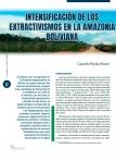 Intensificación de los extractivismos en la Amazonia boliviana